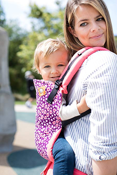 Baby Tula Standard Baby Carrier